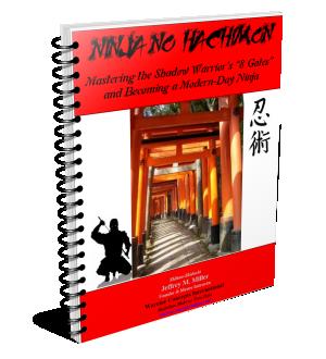 Ninjutsu Training Book