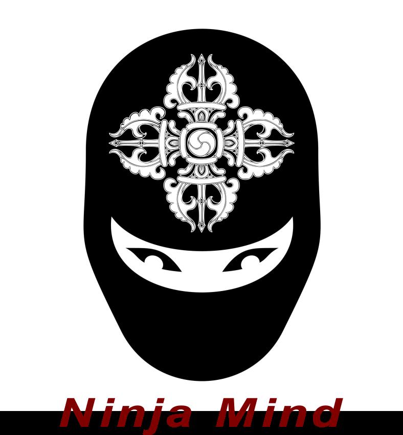 Online Ninjutsu Training